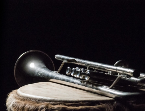 Trumpet Judgments Provide Pandemic Perspective